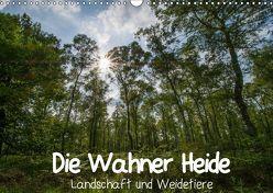 Die Wahner Heide – Landschaft und Weidetiere (Wandkalender 2019 DIN A3 quer) von Peeh,  Doro