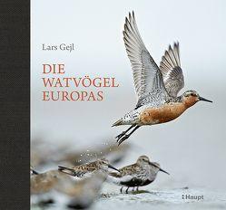 Die Watvögel Europas von Gejl,  Lars, Nutto,  Kirsten, Wiese,  Martina