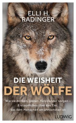 Die Weisheit der Wölfe von Radinger,  Elli H.