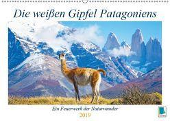 Die weißen Gipfel Patagoniens (Wandkalender 2019 DIN A2 quer) von CALVENDO