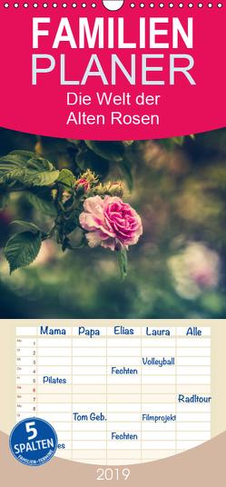 Die Welt der Alten Rosen – Familienplaner hoch (Wandkalender 2019 , 21 cm x 45 cm, hoch) von Steudte,  Regina