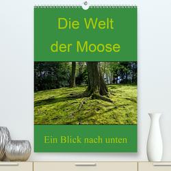 Die Welt der Moose. Ein Blick nach unten (Premium, hochwertiger DIN A2 Wandkalender 2020, Kunstdruck in Hochglanz) von Lewald,  Dominik