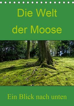 Die Welt der Moose. Ein Blick nach unten (Tischkalender 2019 DIN A5 hoch) von Lewald,  Dominik