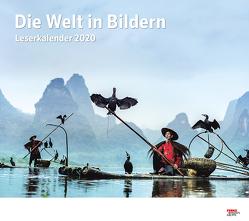 Die Welt in Bildern 2020