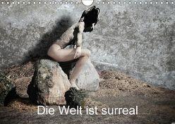 Die Welt ist surreal (Wandkalender 2018 DIN A4 quer) von F. Svetitsch,  Peter