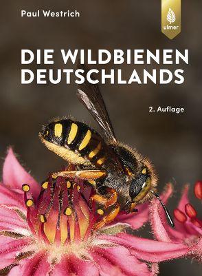 Die Wildbienen Deutschlands von Westrich,  Paul