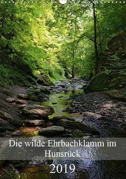 Die wilde Ehrbachklamm im Hunsrück (Wandkalender 2019 DIN A3 hoch) von Frost,  Anja