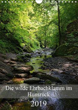 Die wilde Ehrbachklamm im Hunsrück (Wandkalender 2019 DIN A4 hoch) von Frost,  Anja