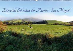 Die wilde Schönheit der Azoren – Sao Miguel (Wandkalender 2019 DIN A2 quer) von Albilt,  Rabea