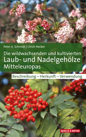 Die wildwachsenden und kultivierten Laub- und Nadelgehölze Mitteleuropas von Hecker,  Ulrich, Schmidt,  Peter A