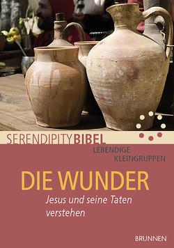 Die Wunder von Serendipity bibel