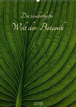 Die zauberhafte Welt der Botanik (Wandkalender 2019 DIN A2 hoch) von Pohl,  Michael