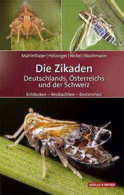 Die Zikaden Deutschlands, Österreichs und der Schweiz von Holzinger,  Werner, Mühlethaler,  Roland, Nickel,  Herbert, Wachmann,  Ekkehard