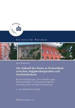 Die Zukunft der Kreise in Deutschland zwischen Aufgabenkooperation und Territorialreform von Tessmann,  Jens