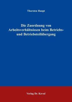 Die Zuordnung von Arbeitsverhältnissen beim Betriebs- und Betriebsteilübergang von Haupt,  Thorsten