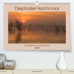 Diepholzer Hochmoor (Premium, hochwertiger DIN A2 Wandkalender 2020, Kunstdruck in Hochglanz) von N.,  N.