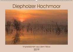 Diepholzer Hochmoor (Wandkalender 2019 DIN A2 quer) von N.,  N.