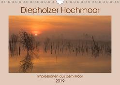Diepholzer Hochmoor (Wandkalender 2019 DIN A4 quer) von N.,  N.