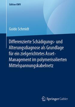 Differenzierte Schädigungs- und Alterungsdiagnose als Grundlage für ein zielgerichtetes Asset-Management im polymerisolierten Mittelspannungskabelnetz von Schmidt,  Guido