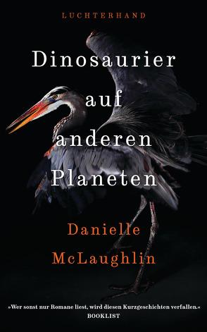 Dinosaurier auf anderen Planeten von McLaughlin,  Danielle, Morawetz,  Silvia