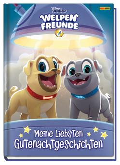Disney Junior Welpenfreunde: Meine liebsten Gutenachtgeschichten von Geschwind,  Verena, Weber,  Claudia, Wöhrmann,  Ruth
