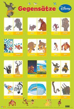 Disney Lernposter: Disney Klassiker – Gegensätze von Disney Enterprises,  Inc.,  Inc.