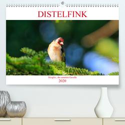 Distelfink (Premium, hochwertiger DIN A2 Wandkalender 2020, Kunstdruck in Hochglanz) von Jäger,  Anette