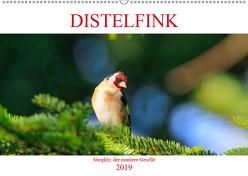 Distelfink (Wandkalender 2019 DIN A2 quer) von Jäger,  Anette