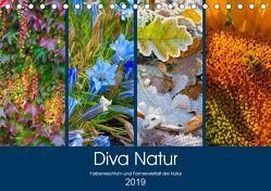 Diva Natur (Tischkalender 2019 DIN A5 quer) von Seifert,  Birgit