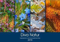 Diva Natur (Wandkalender 2019 DIN A2 quer) von Seifert,  Birgit