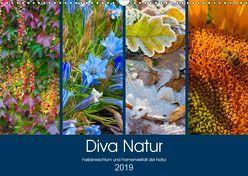 Diva Natur (Wandkalender 2019 DIN A3 quer) von Seifert,  Birgit
