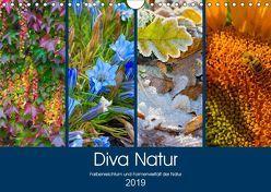 Diva Natur (Wandkalender 2019 DIN A4 quer) von Seifert,  Birgit
