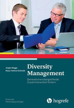 Diversity Management von Schmidt,  Klaus-Helmut, Wegge,  Jürgen