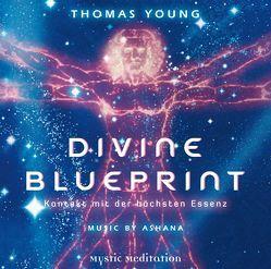 DIVINE BLUEPRINT – Kontakt mit der höchsten Essenz