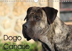 Dogo Canario (Wandkalender 2019 DIN A4 quer) von Wobst,  Petra