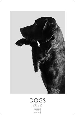 Dogs 2022 S 29x21cm