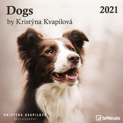 Dogs by Kristýna Kvapilová 2021 – Wand-Kalender – Broschüren-Kalender – 30×30 – Hunde von Kvapilová,  Kristýna
