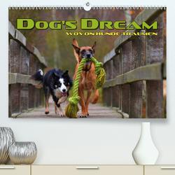 DOG'S DREAM – wovon Hunde träumen (Premium, hochwertiger DIN A2 Wandkalender 2021, Kunstdruck in Hochglanz) von Bleicher,  Renate