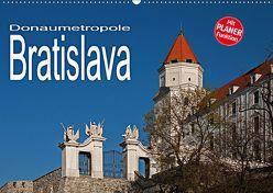 Donaumetropole Bratislava (Wandkalender 2019 DIN A2 quer)