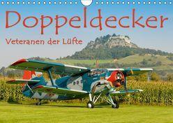 Doppeldecker – Veteranen der Lüfte (Wandkalender 2019 DIN A4 quer) von Keller,  Markus