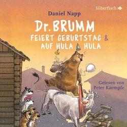 Dr. Brumm feiert Geburtstag / Dr. Brumm auf Hula Hula (Dr. Brumm ) von Kaempfe,  Peter, Napp,  Daniel