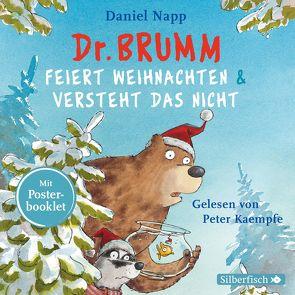 Dr. Brumm feiert Weihnachten / Dr. Brumm versteht das nicht von Kaempfe,  Peter, Napp,  Daniel