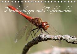 Drachenfliegen und Teufelsnadeln (Tischkalender 2018 DIN A5 quer) von Freiberg,  Thomas