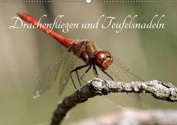 Drachenfliegen und Teufelsnadeln (Wandkalender 2018 DIN A2 quer) von Freiberg,  Thomas