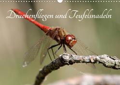 Drachenfliegen und Teufelsnadeln (Wandkalender 2021 DIN A3 quer) von Freiberg,  Thomas