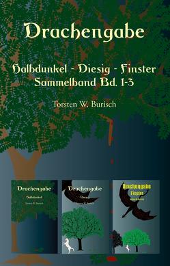 Drachengabe – Halbdunkel – Diesig – Finster von Burisch,  Torsten W.