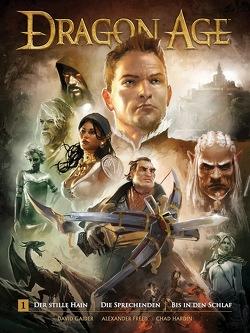 Dragon Age 1 von Gaider,  David, Hardin,  Chad, Stumpf,  Jacqueline
