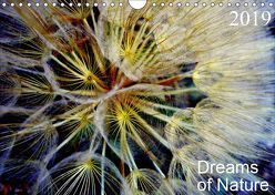Dreams of Nature (Wandkalender 2019 DIN A4 quer) von AnBe