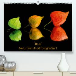 """""""Drei"""" Natur kunstvoll fotografiert (Premium, hochwertiger DIN A2 Wandkalender 2021, Kunstdruck in Hochglanz) von Goerz,  Beate"""