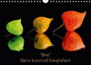 """""""Drei"""" Natur kunstvoll fotografiert (Wandkalender 2018 DIN A4 quer) von Goerz,  Beate"""